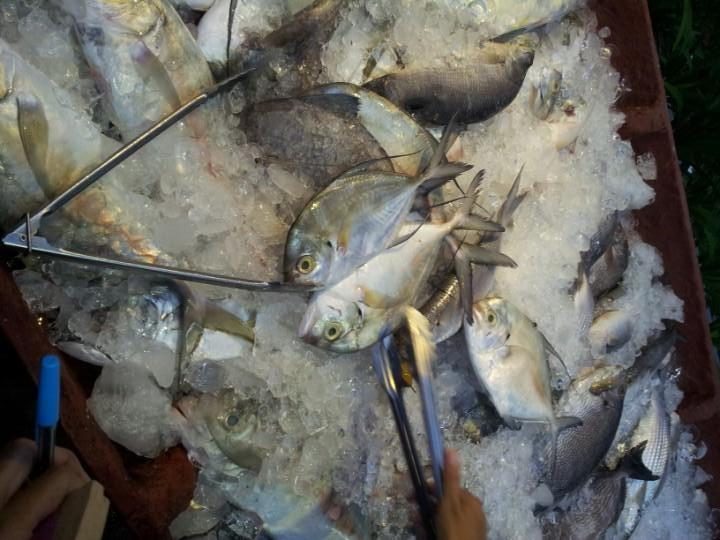 De Sampan Seafood & BBQ, Nice Batam Seafood in Town