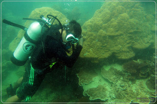 Diving and Snorkeling in P. Abang, Batam