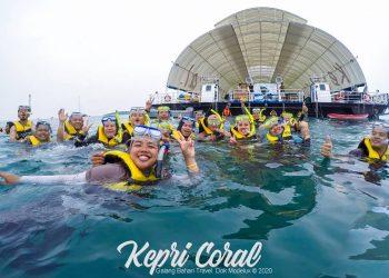 Kepri Coral Island Snorkeling